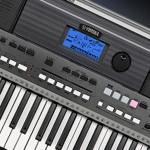 Portable Keyboards