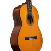 Electric Nylon String Guitars